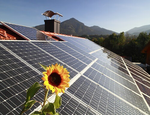 """Sell your home faster by """"going green"""""""
